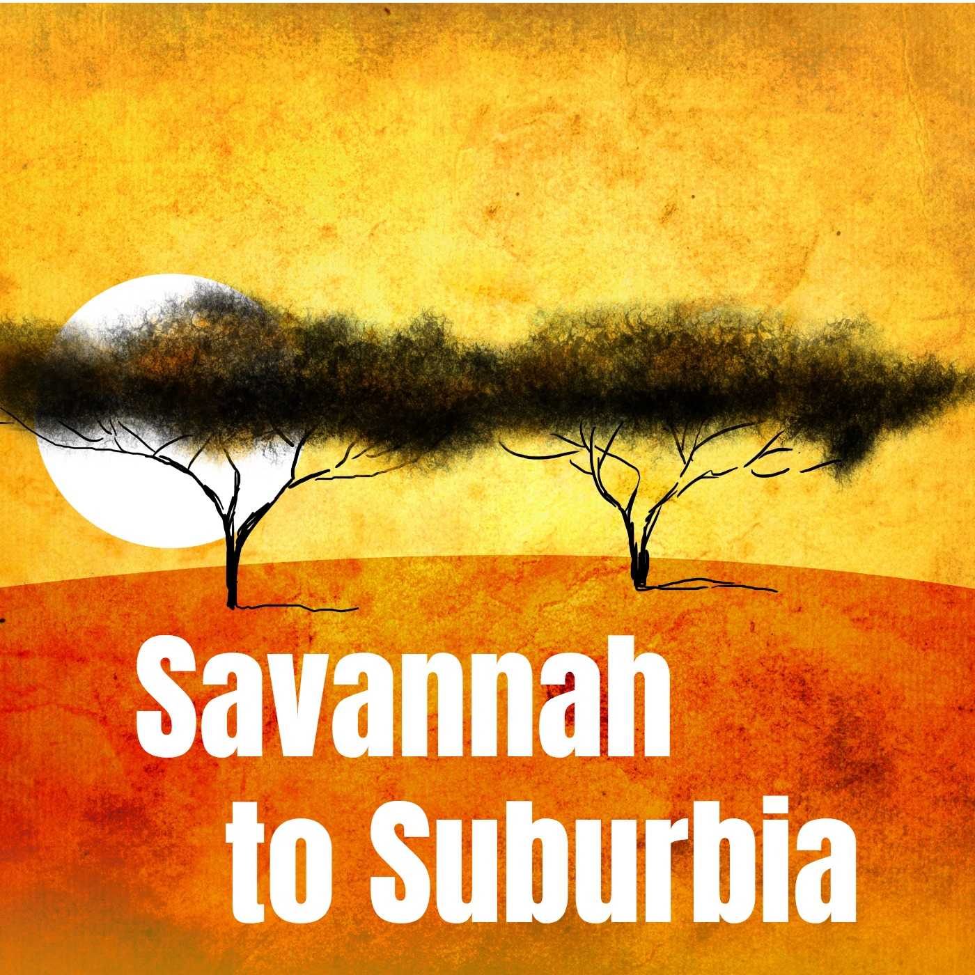 Savannah to Suburbia Podcast